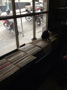 The shop cat sitting on '80s rock'.